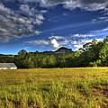 Field Bathed In Sunshine by Darren Burton