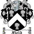 Field Coat Of Arms I Irish by Heraldry