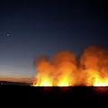 Field Fire. Nchalo, Shire Walley by Kennet Havgaard