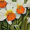 Field Of Daffodils by Karen Beasley