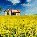 Field Of Dreams by Betty LaRue