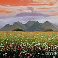 Field Of Flowers by Caroline Street