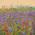 Field Of Flowers by Cathy Anderson
