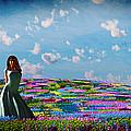 Field Of Flowers... by Tim Fillingim