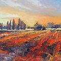 Field Of Light Oil Painting by Chris Hobel