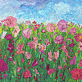 Field Of Pink For The Ladies by Krista Hopper
