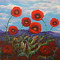 Dreaming Of Poppies by Kathy Peltomaa Lewis