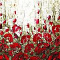 Field Of Poppies by Susanna Shaposhnikova