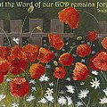 Field Of Poppies With Scripture by Mona Elliott