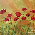Field Of Red Poppies by Jean Fry