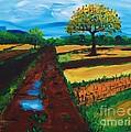 Field Road by Lidija Ivanek - SiLa