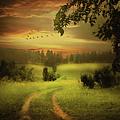 Fields Of Dreams by Isabella Howard