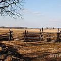 Fields Of Gettysburg by Jim Cook