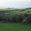 Fields Of Ireland by Margaret Hodgson