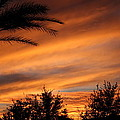 Fiery Arizona Sunset by Gregg S