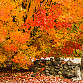 Fiery Rock Wall by Jeff Folger