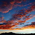 Fiery Skies by James Brunker