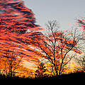 Fiery Sundown by Linda Shannon Morgan