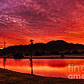 Fiery Sunrise by Robert Bales