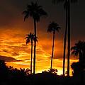 Fiery Sunset by Deb Halloran