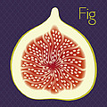 Fig by Christy Beckwith