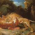 Fight Between A Lion And A Tiger, 1797 by James Ward