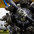 Boeing-stearman Model 75 Kaydet by Pablo Lopez