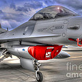 Fighting Falcon by Ken Johnson
