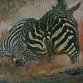 Fighting Zebras by Les Lyden
