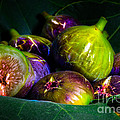 Figs by Edgar Laureano