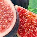Figs by Munir Alawi