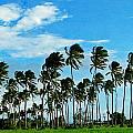 Fiji by Ben Yassa