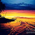Fiji Paradise Sunset by Jerome Stumphauzer