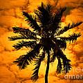 Fijian Sunset by Ben Yassa