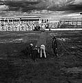Film Homage Nicholas Ray The Lusty Men 1952 Rko Tucson Rodeo 1983-2008 by David Lee Guss