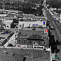 Film Homage Ted Degrazia Cine Plaza Theater  Blue W. Congress Tucson Arizona 1936-2008 by David Lee Guss