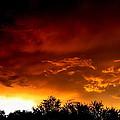 Film Noir Errol Morris The Dark Wind 1991 Casa Grande Arizona 2004 by David Lee Guss