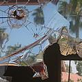 Film Noir Jim Thompson The Grifters 1990 Palm Trees Shattered Glass Casa Grande Arizona 2004 by David Lee Guss