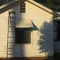 Film Noir John Garfield Lana Turner The Postman Always Rings Twice Ladder House Black Canyon Az by David Lee Guss