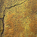 Film Noir Pat O'brien Crack-up 1946 Rko Radio Parking Lot Coolidge Arizona 2004 by David Lee Guss