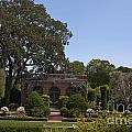 Filoli Sunken Garden by Jason O Watson