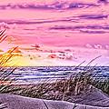 Filtered Beach by Alex Hiemstra
