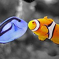 Finding Nemo Deleted Scene by Nathan Rupert