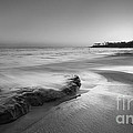 Finding Serenity Bw by Michael Ver Sprill