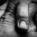 Fingers by Clare Bevan