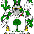 Finnerty Coat Of Arms Irish by Heraldry
