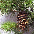 Fir Cone Digital Painting by Sharon Talson
