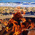 Fire At The Beach by Mariola Bitner