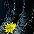 Fire Boots Hdr by Kerri Mortenson