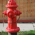 Fire Hydrant 3 by Richard W Linford
